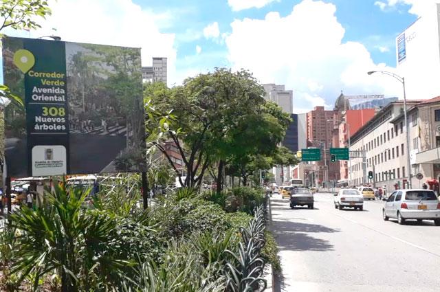 Jard n separador de la avenida oriental est casi listo noticias caracol - Separador jardin ...