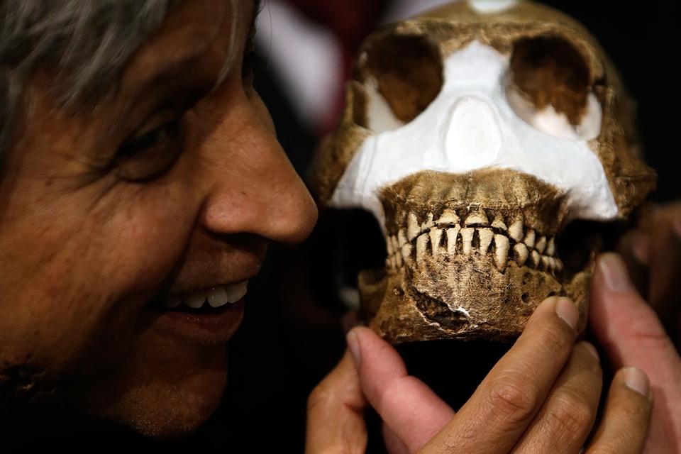 Homo naledi, el nuevo antepasado de la raza humana - Noticias Caracol